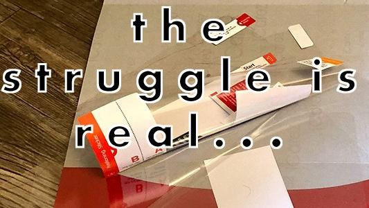 thestruggle